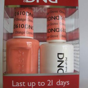 DND Gel & Polish Duo 610 - Orange Grove